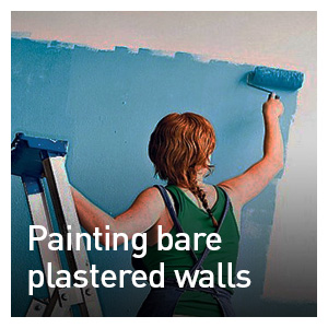 PAINTING BARE PLASTERED WALLS